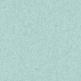 淡水色(うすみずいろ)雲竜